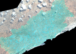 Measuring Service Provision in Somalia